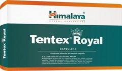 Tentex Royal x 10cps (Himalaya)