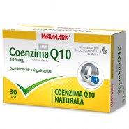W-Coenzima Q10 MAX 100mg x 30cps
